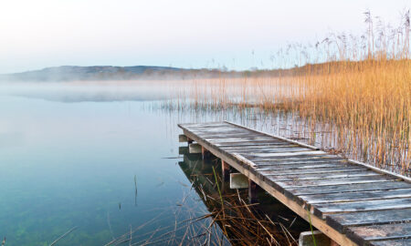 pier-sitting-calmly-over-lake-with-golden-grass-in-background
