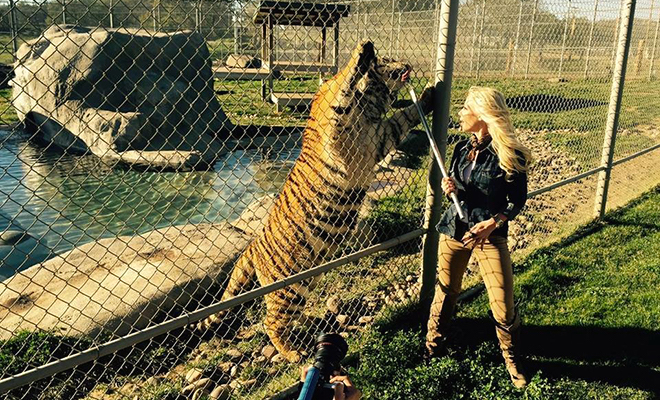 Interview with Owner of Lions, Tigers & Bears, an Exotic Animal Rescue Organization