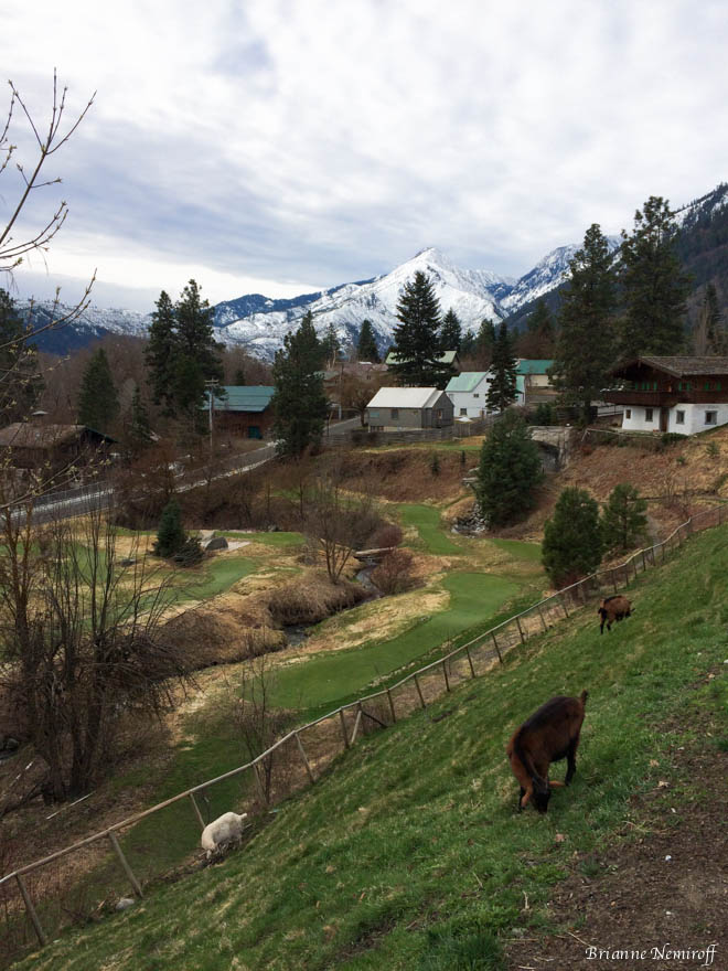 leavenworth-visiting as a vegan-vegetarian - travel- viva glam magazine - brianne nemiroff (6 of 30)