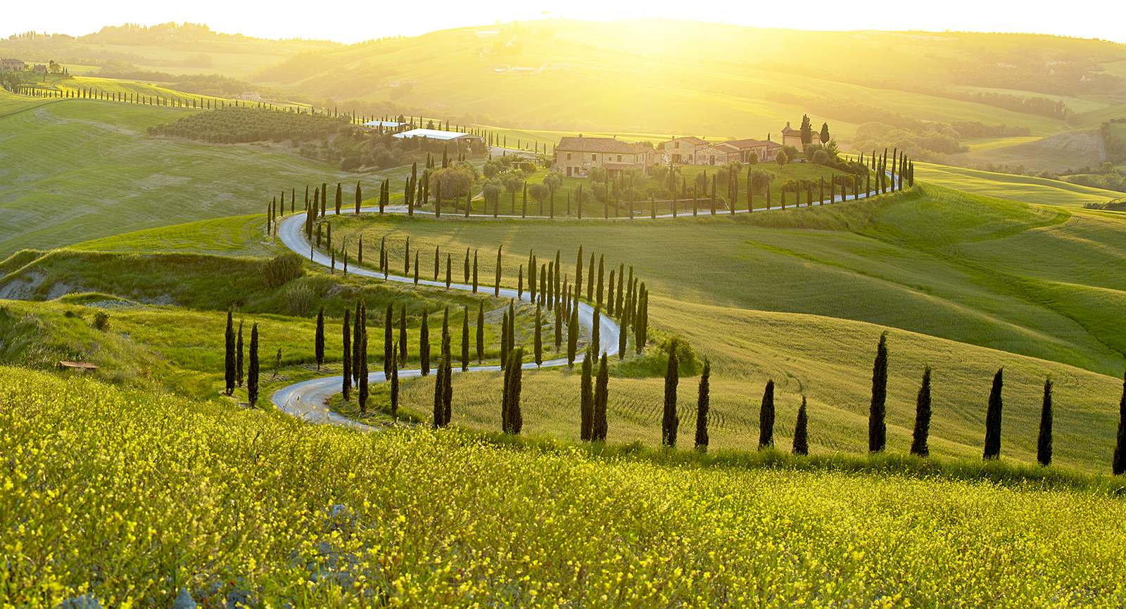 spiritual-landscape-beautiful-green-peaceful-freedom-light-green