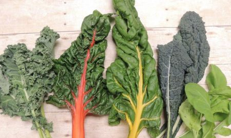 five different kinds of bitter-flavored green leafy vegetables background brown wood, reasons to eat bitter foods, The Sweet Benefits of Consuming Bitter Foods