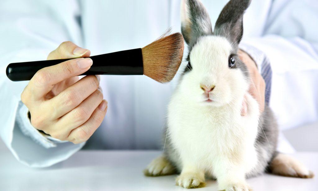 animal testing, cruelty free