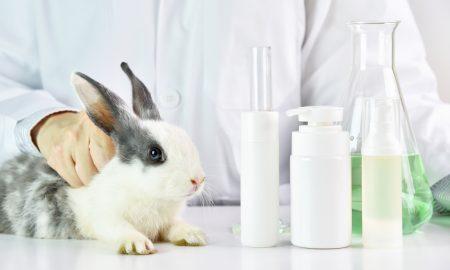 animal testing, cruelty-free, cruelty free, vegan