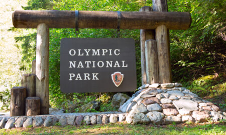 olympic-national-park-main-image