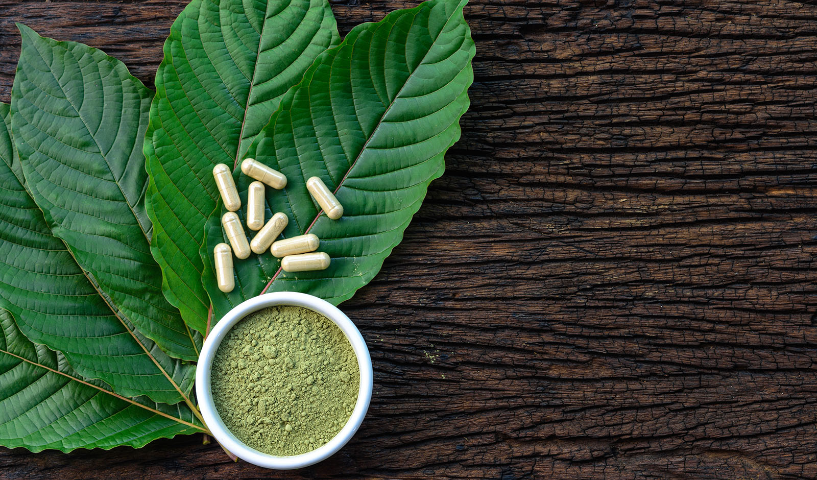 Mitragyna speciosa or kratom leaves with medicinal products in c