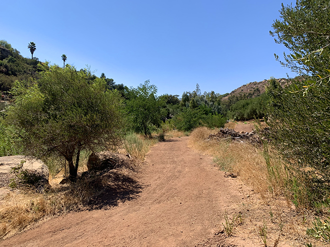 viva-glam-team-malorie-mackey-katarina-van-derham-ojai-olive-oil-company-grounds-olive-trees