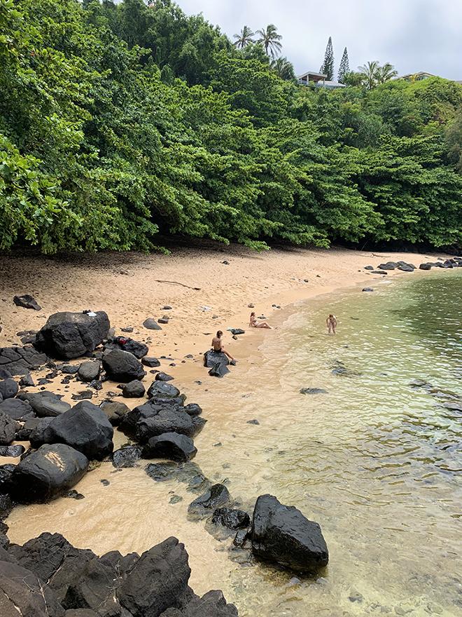 kauai-adventure-destination-beautiful-jungle-nature-travel-traveling-sealodge-beach