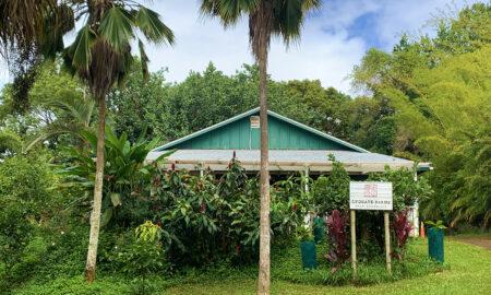lydgate-farms-chocolate-tour-kauai-hawaii-viva-glam-magazine-main-image