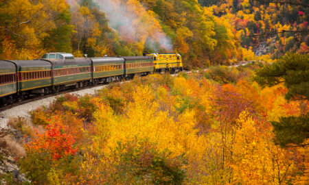 most-exciting-last-minute-trip-ideas-before-winter-train-in-countryside-in-fall