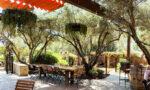 the-stonehaus-westlake-village-inn-travel-viva-glam (1)