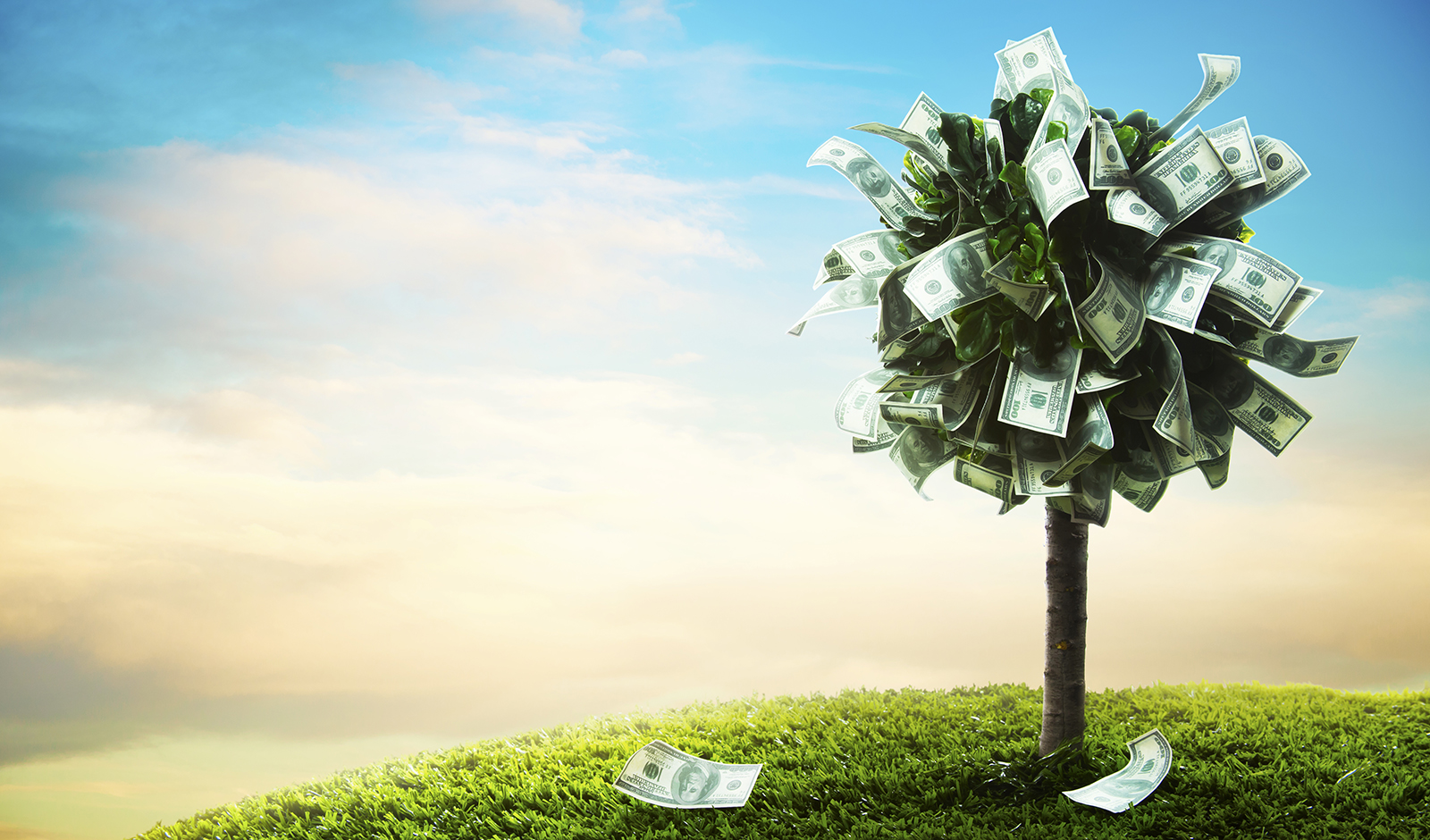 how-to-pay-off-debt-money-growing-on-tree